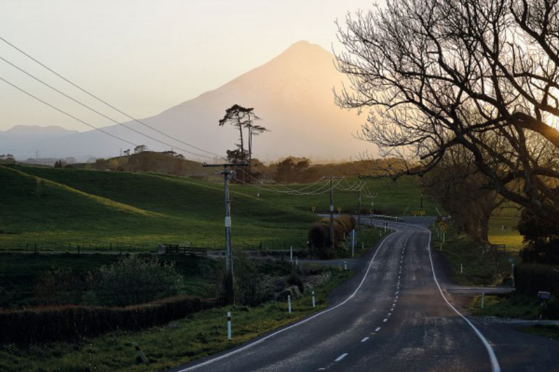 best-road-trips-nz